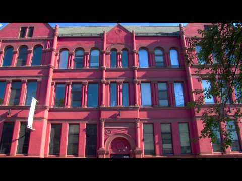 P.S. 731 Brooklyn Excelsior Charter School