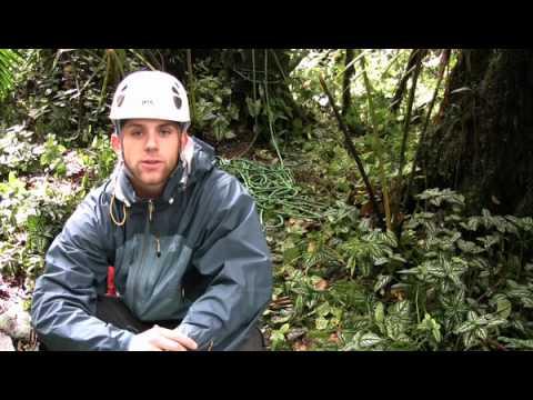 Eric Lindquist Biology 101 - Los Questzales Lodge, Panama #3