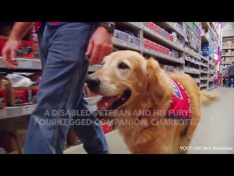 Air Force Vet and His Service Dog Are A Big Hit At Their New Job Working For Lowes