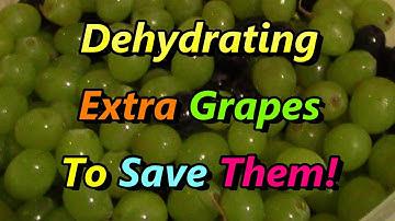 Extra Grapes? Make RAISINS! You'll Never Look Back!