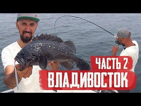 АКУЛА и морской ОКУНЬ во Владивостоке! СТАРБЛОГ