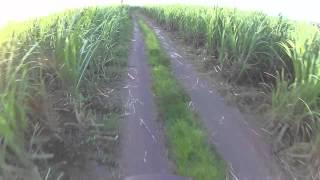 PM Trail Giant Trance 27.5 Balayan, Batangas