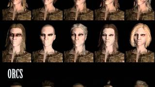 Skyrim - All Races and Faces New Screenshots! All Character Creation Presets Revealed!