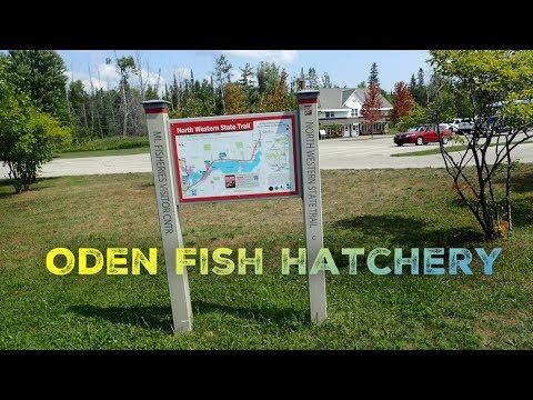 Oden Fish Hatchery