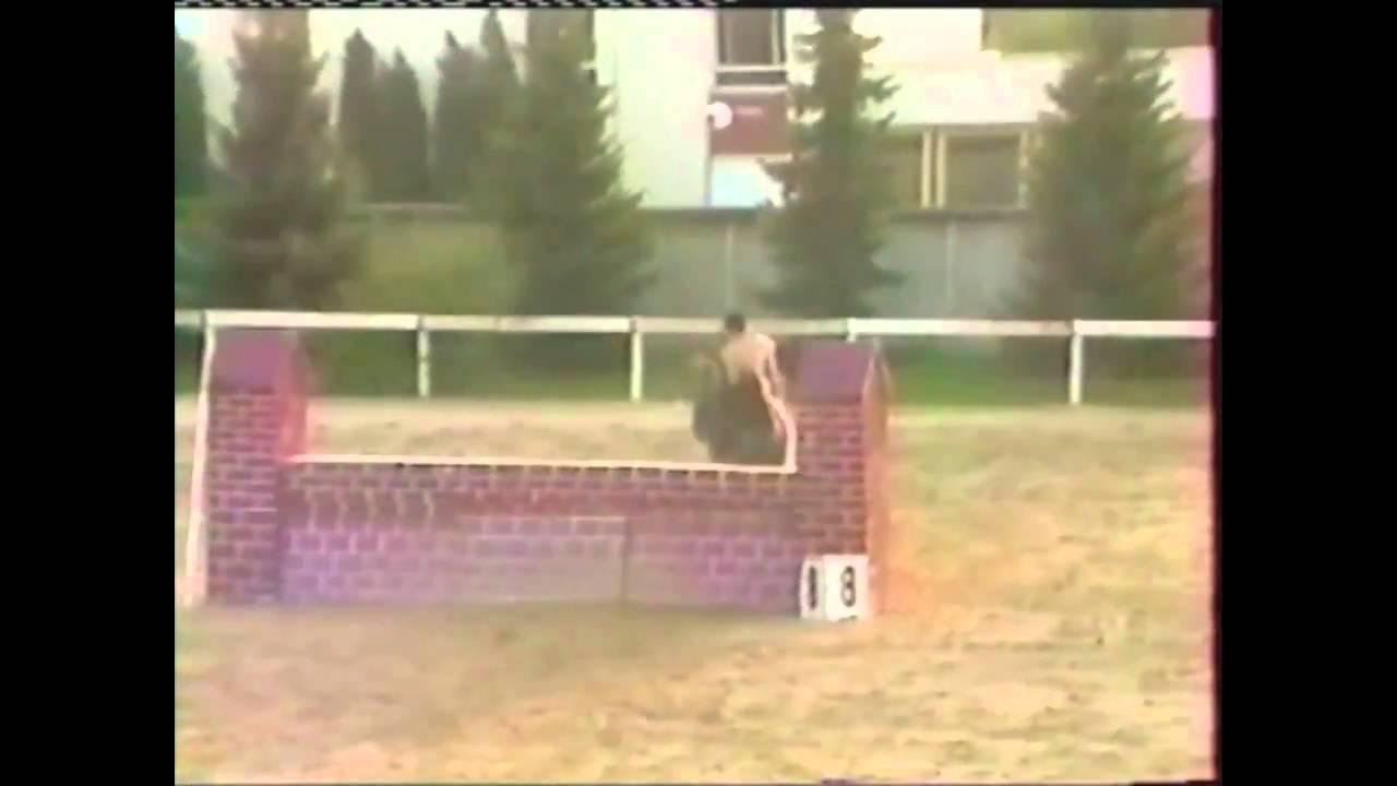 Naked Horse Jumping - Youtube-4210