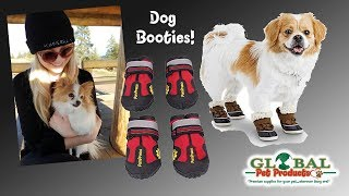 best dog shoes in USA best dog shoes