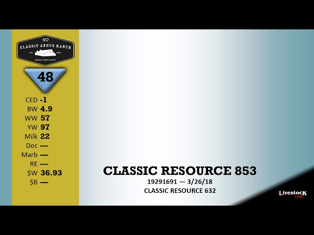 Classic Angus Ranch Lot 48