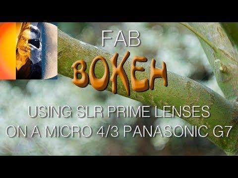 Prime SLR Lens Bokeh Test on Micro 4 Thirds Panasonic G7