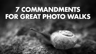 7 Commandments for Great Photo Walks