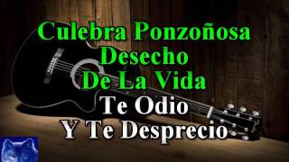 karaoke Rata De Dos Patas Paquita La Del Barrio