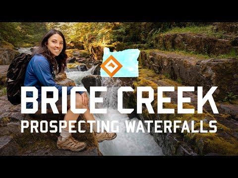Hiking Oregon - Brice Creek
