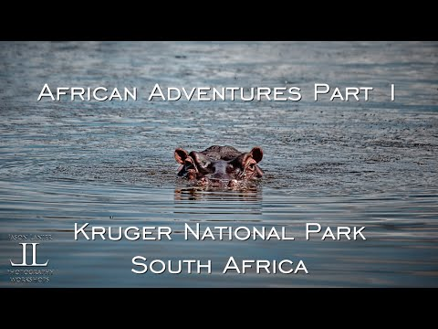 African Adventures Part 1- My EPIC journey to Kruger National Park in South Africa by Jason Lanier