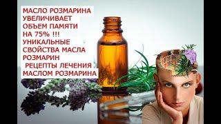 Масло розмарина увеличивает объем памяти на 75 процентов уникальные свойства масла розмарина рецепты