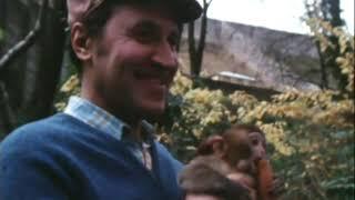 """Программа """"В мире животных"""" в Сухумском обезьяньем питомнике, 1981 год"""