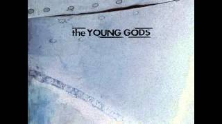 THE YOUNG GODS - Skinflowers