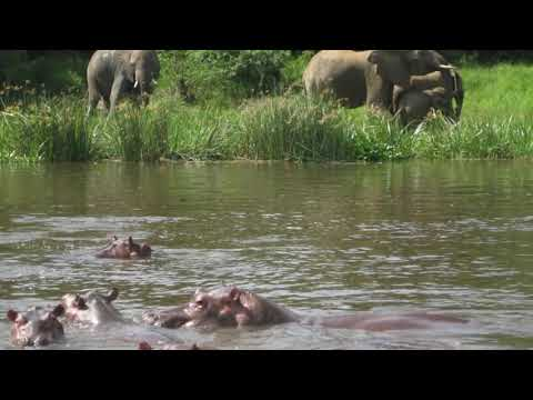 South Sudan Travel Guide Visit the River Nile  Explore Boma National Park