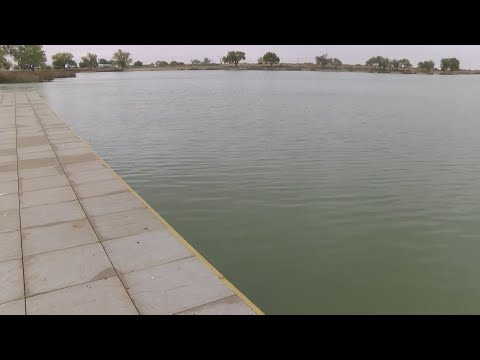 Fish Dying At Roswell Lake; NM Game & Fish Monitoring