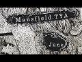 Capture de la vidéo Mansfield.tya - The Day Goes Pale (Official Audio)