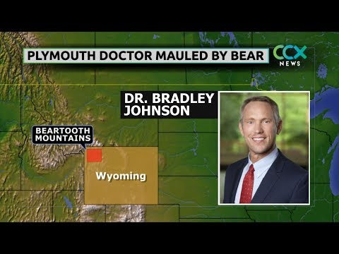 Plymouth doctor mauled by bear in Yellowstone
