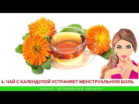 Чай с календулой нужно пить каждый день! - Домашний лекарь - выпуск №121