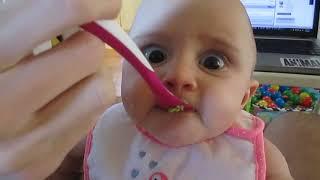 【???】表情豊かな赤ちゃん、初めてのアボカドに困惑