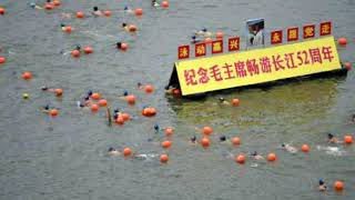 China arrests 12 people for dumping toxic waste