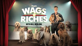 """Video From Wags to Riches, Episode 2, """"Bad Chico"""" - August 13, 9/8PM C download MP3, 3GP, MP4, WEBM, AVI, FLV November 2017"""