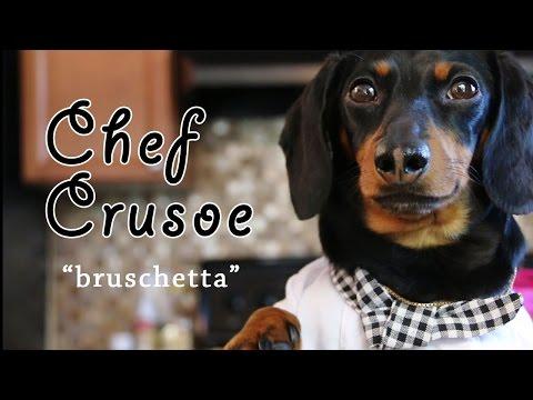 Chef Crusoe the Dachshund, Meets Gino D'Acampo - 'Bruschetta'