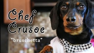 "Chef Crusoe The Dachshund, Meets Gino D'acampo - ""bruschetta"""