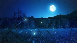 Relaxing Sleep Music and Night Nature Sounds: Soft Crickets, Beautiful Piano, Deep Sleep Music