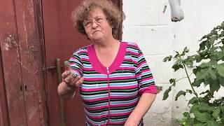 Бабушка травит свою собаку крысиным ядом