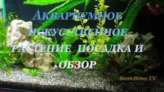 Аквариумное искусственное растение  посадка и обзор