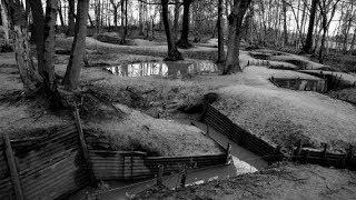 DIE WELT - Die Narbe. 100 Jahre Erster Weltkrieg - Eine Reise an die Front