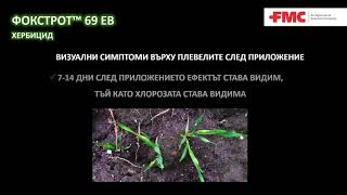 Фокстрот™ 69 ЕВ хербицид от ФМС