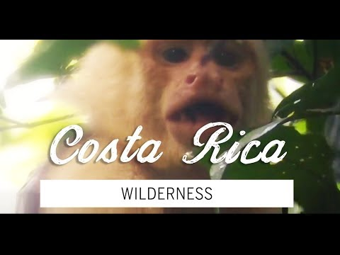Wild Costa Rica Vacation (DJI Spark and GoPro)
