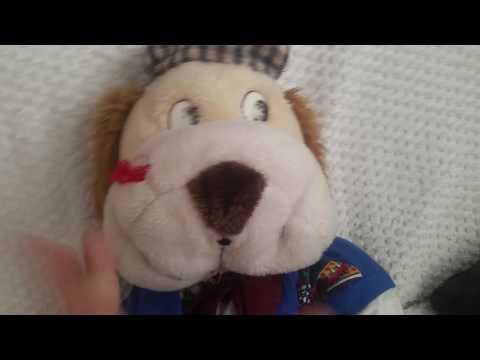 Dario's News: Big Bear VS Polar Bear