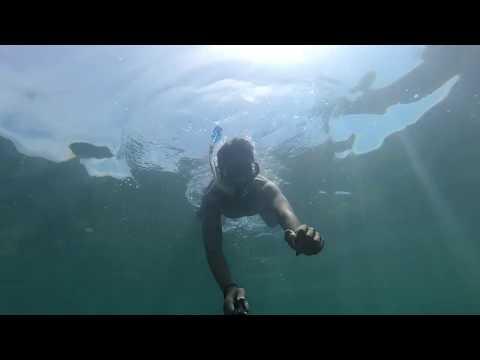 Snorkeling in UMAG (Croatia)
