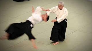 Moriteru Ueshiba Doshu - 54th All Japan Aikido Demonstration (2016)