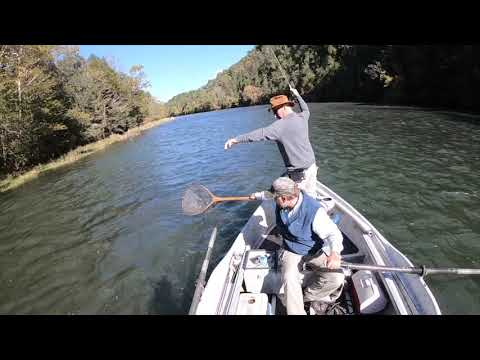 Fly Fishing South Holston