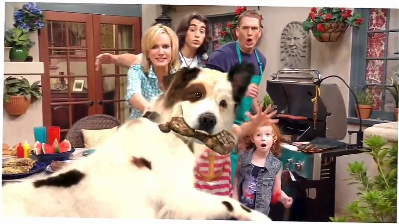 Dog With A Blog - Season 1 Opening Theme Song - YouTube