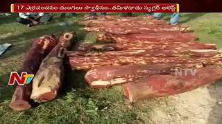 Police Arrested Red Sandalwood Smugglers in Chittoor District || NTV