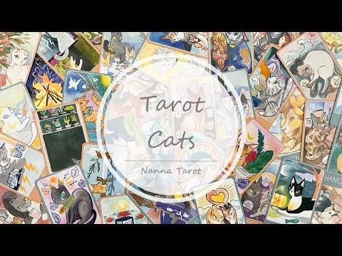 開箱  大眼貓塔羅牌 • Tarot Cats // Nanna Tarot