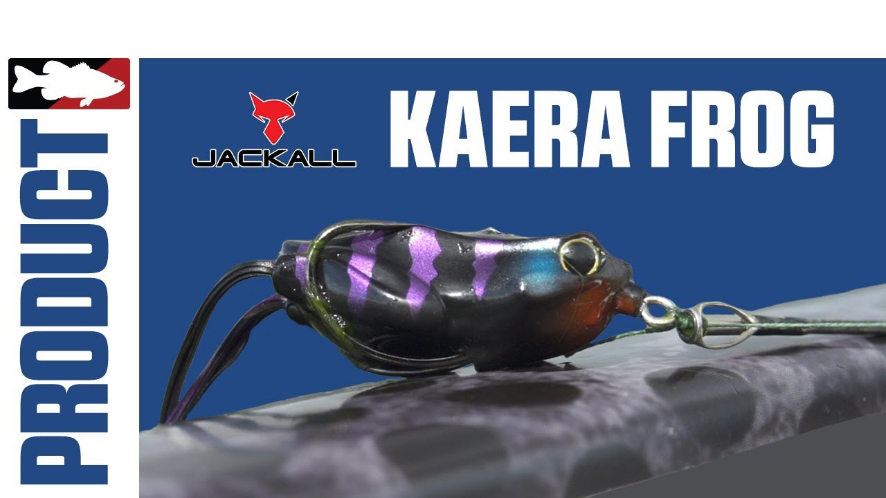 Jared Lintner and Alex Davis Discuss the Jackall Kaera Frog