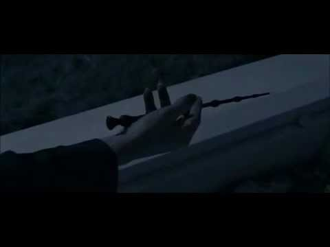 Voldemort gains possesion of the elder wand youtube for Elder wand made of