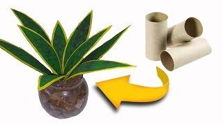 Do Lixo ao luxo: Planta com rolos de papel