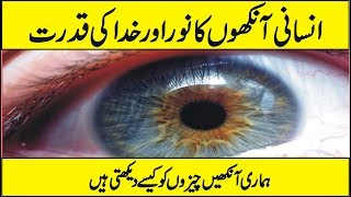 How The Eye Works and How Do We see In Urdu Hindi