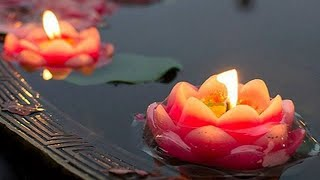 Water Flowing & Soft Zen Music For Sleep Deeply ~ Relaxation Study Méditation Spa ~ 2 Hours