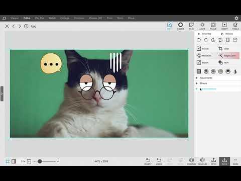 Replace Image - PhotoScape X 4.0