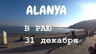 ALANYA Что 31 декабря ожидало приехавших в рай Алания Турция
