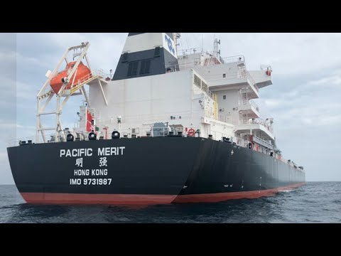 Bulk Carrier Pacific Merit - Port of Santos City - Brazil